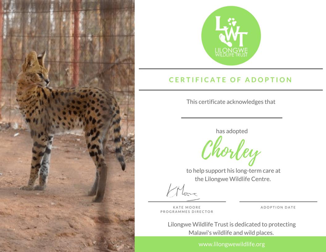 Adoption Pack Lilongwe Wildlife Trust