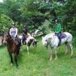 Horse riding in Zomba