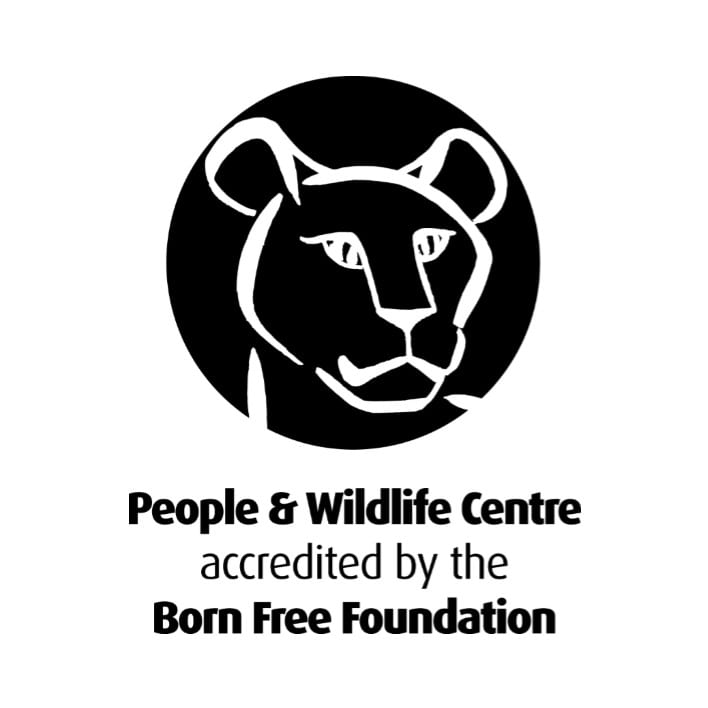 BFF PAW Accreditation