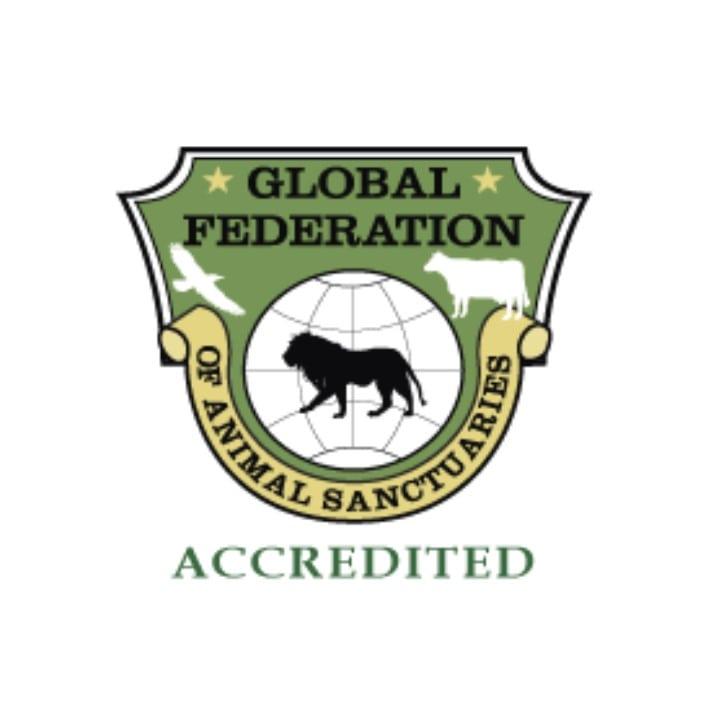 GFAS acc