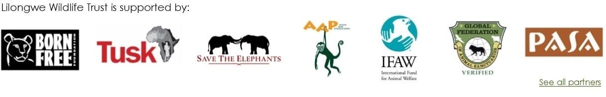 Homepage partners