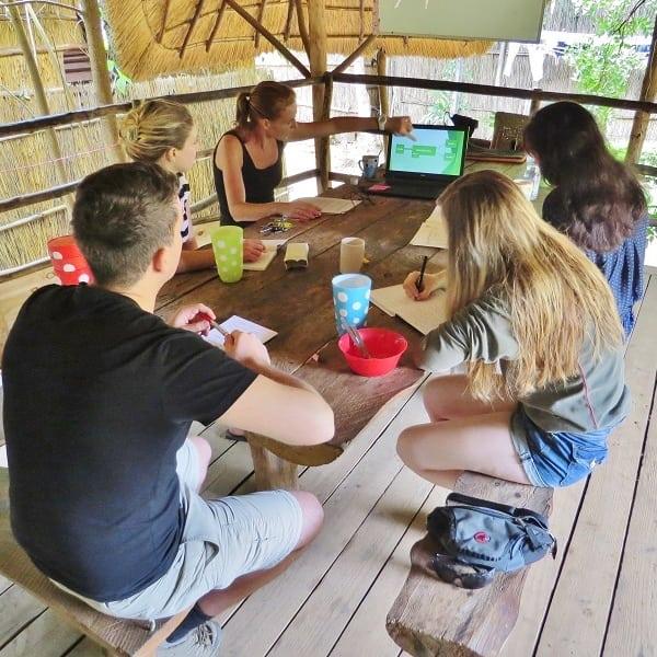 Students learning wildlife rehabilitation theory
