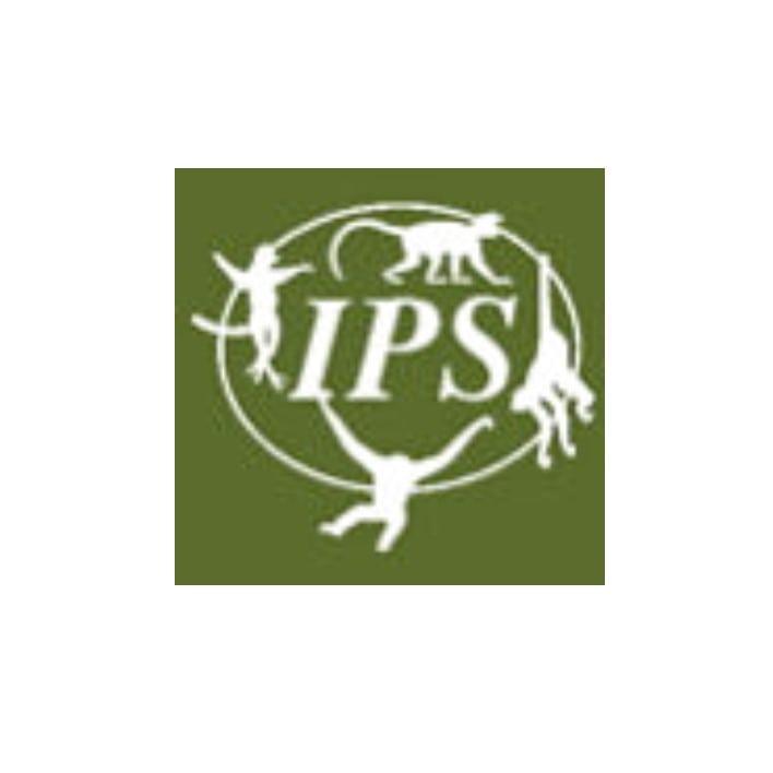 International Primatological Society