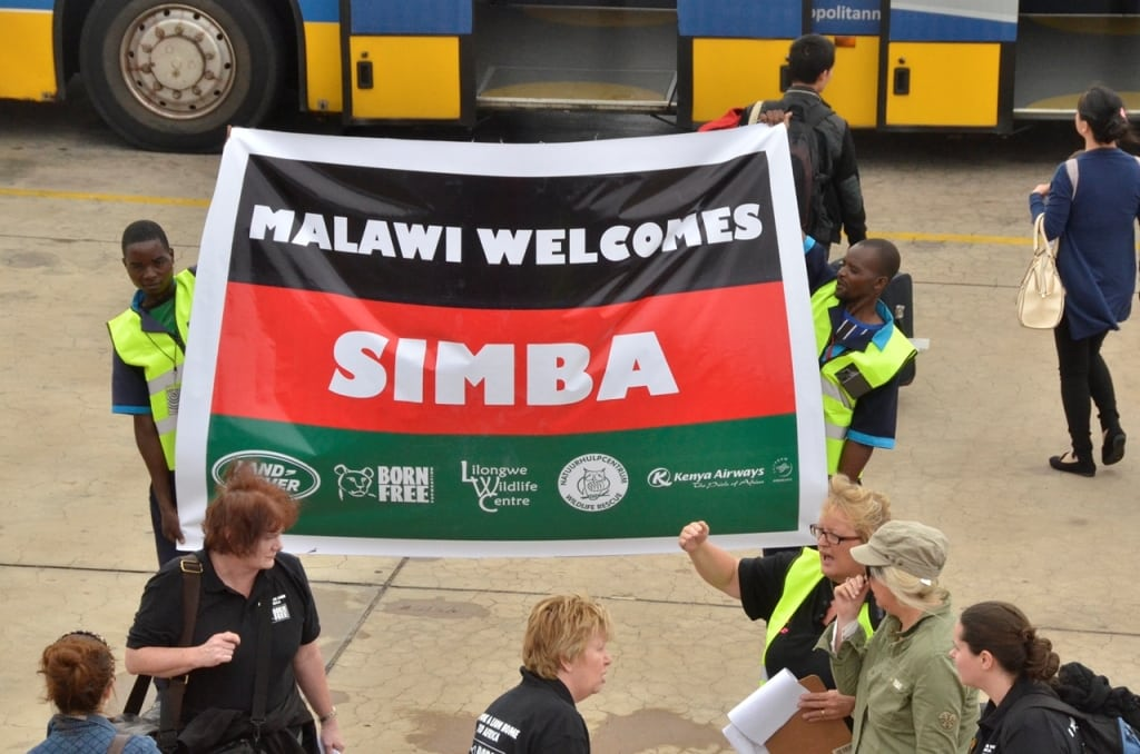 Malawi welcomes Simba