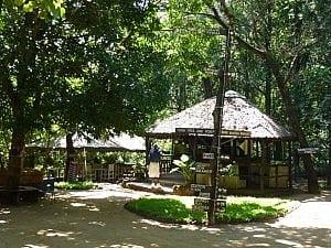 Lilongwe Wildlife Centre Cafe