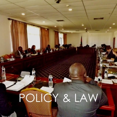 POLICY & LAW