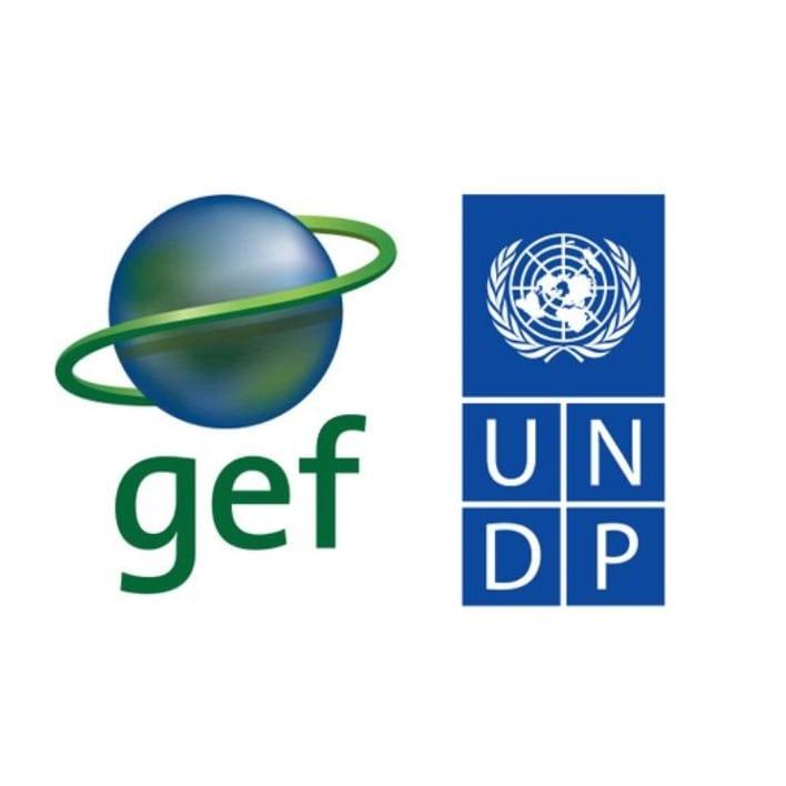 GEF - UNDP