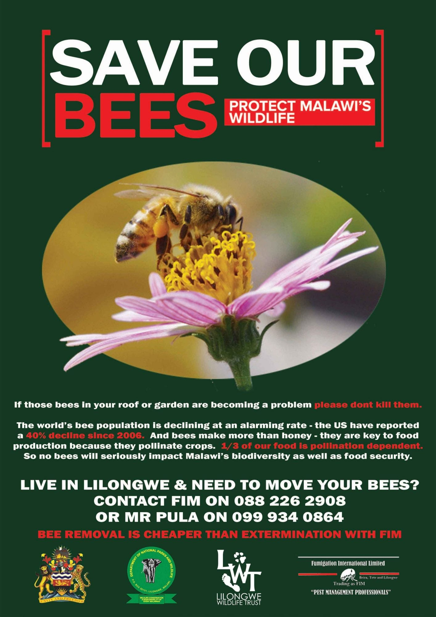 SAVE OUR BEES CAMPAIGN
