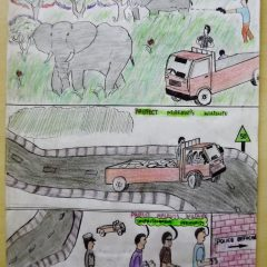 POSTER COMPETITION WINNERS ANNOUNCED: 'Protect Malawi's Wildlife', 'Titeteze chilengedwe chathu'