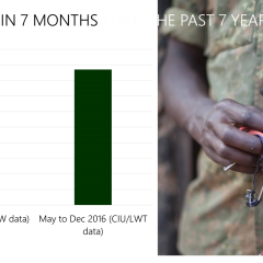 MORE IVORY TRAFFICKING ARRESTS IN LAST 7 MONTHS THAN THE PRECEDING 7 YEARS