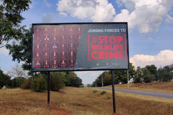 Ambassador billboard_SWC_campaigns