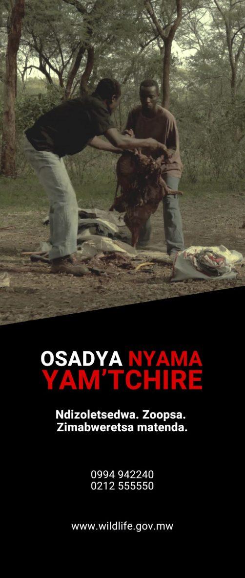 Bushmeat Rollup Chichewa