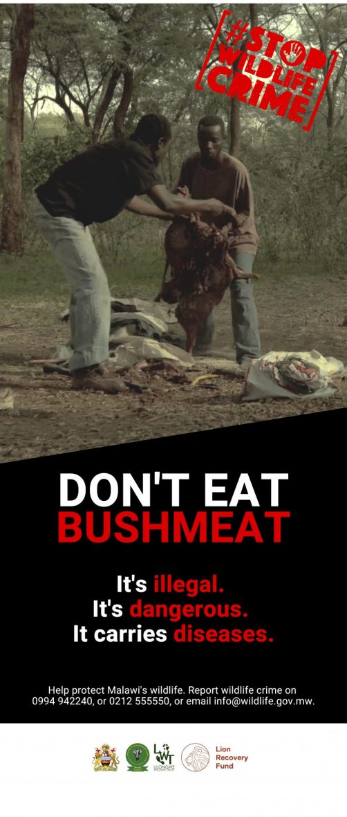Bushmeat Rollup English
