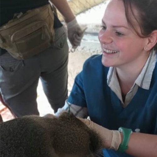 Charlotte Bentley LWC vet_LWT Staff