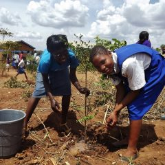 TREE PLANTING SEASON IS UPON US!