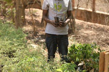 Meet Ernest: a Malawian sanctuary intern