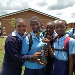 TREE PLANTING WITH SCHOOLS