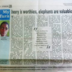 IVORY IS WORTHLESS. OUR ELEPHANTS ARE IMMENSELY VALUABLE.
