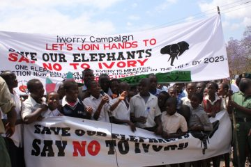 Lilonge Wildlife Trust Responds to New CITES Report
