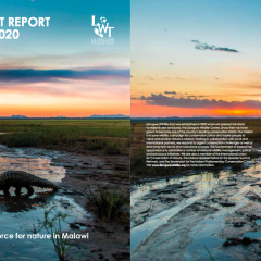 IMPACT REPORT 2019-20: A FORCE FOR NATURE