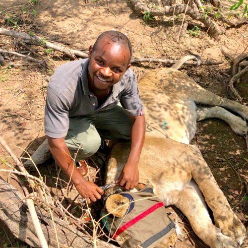 Laston Chimaliro (Wildlife Technician)