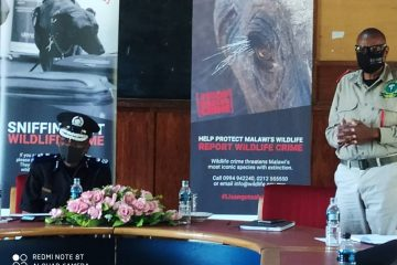 MALAWIAN AUTHORITIES MAKE PUBLIC COMMITMENT TO FIGHT WILDLIFE & FOREST CRIME