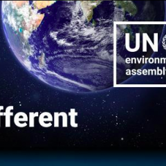 Plans for New Nature Campaign Announced at UN Environment Assembly