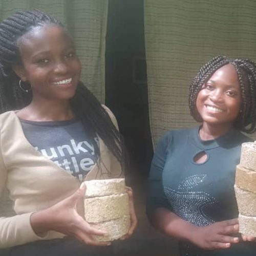 Two women holding finished briquettes