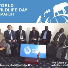 WORLD WILDLIFE DAY PANEL DISCUSSION