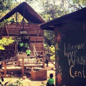 lilongwe wildlife centre playground
