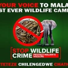 STOP WILDLIFE CRIME CAMPAIGN 2014-2016
