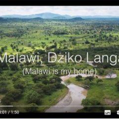 CELEBRATING WORLD WILDLIFE DAY 2020: 'MALAWI, MY HOME' VIDEO