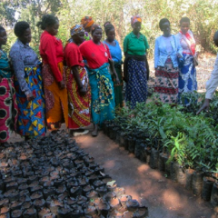 PROVIDING INCOME-GENERATING TRAINING FOR WOMEN'S GROUPS