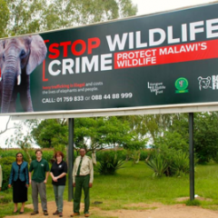 MALAWI STEPS UP FOR WORLD WILDLIFE DAY