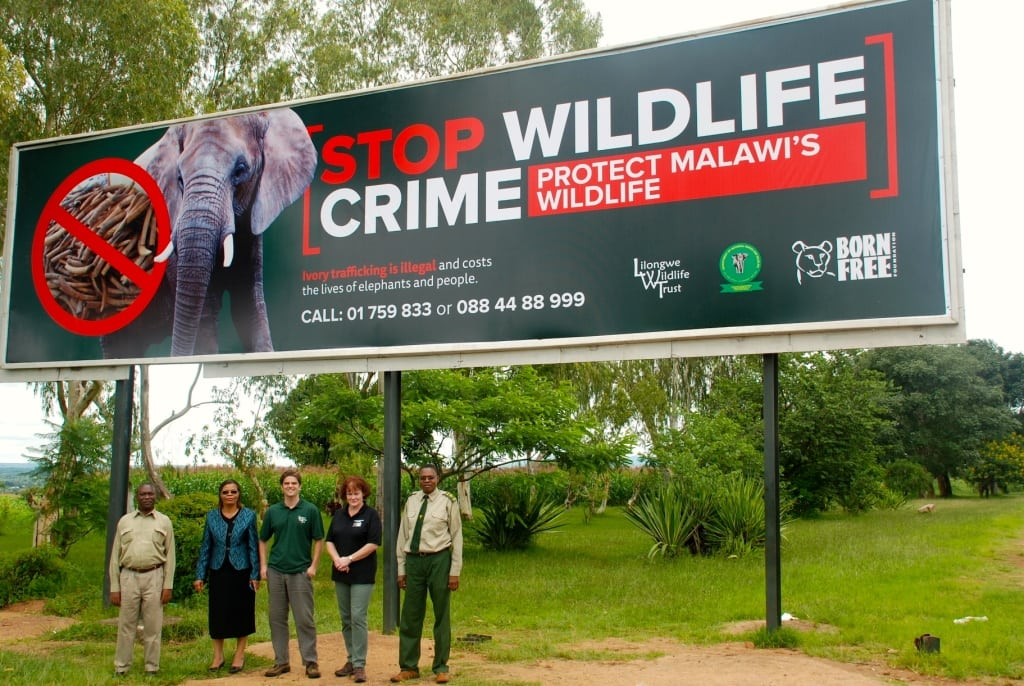 Stop Wildlife Crime Campaign